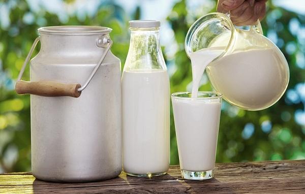 Sữa chưa được tiệt trùng
